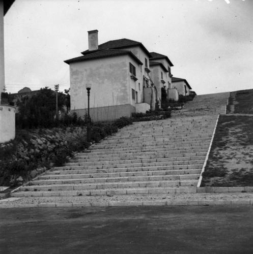 Olivais 1953-2