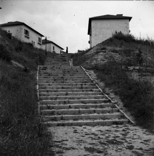 Olivais 1953